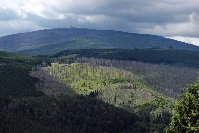 Brocken im Nationalpark Harz
