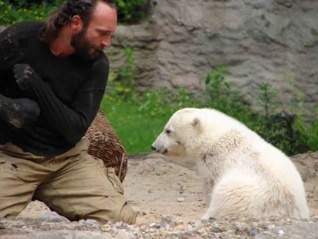 Knut der Eisbär Pfleger Thomas Dörflein