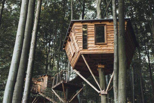 Robins Nest Baumhaushotel