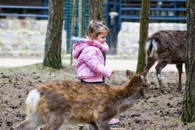 Tierpark Germendorf