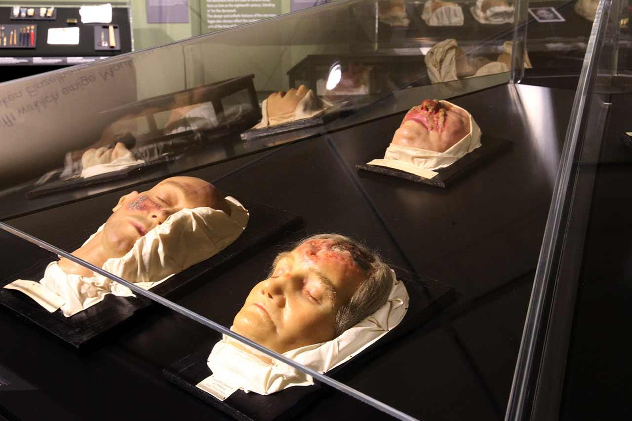 Medizinhistorisches Museum Hamburg