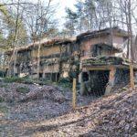 Ruinen Besenhorster Sandberge Ruinenwald Pulverfabrik Düneberg (7)