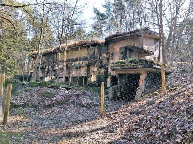 Ruinen Besenhorster Sandberge Ruinenwald Pulverfabrik Düneberg