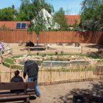 Erlebnistierpark Memleben (3)