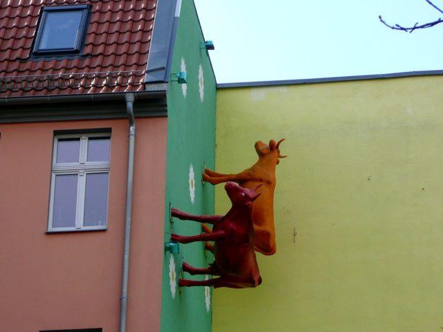 Rückkehr der Kühe Berlin